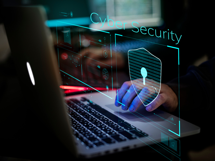 What Is Security Program And Controls?