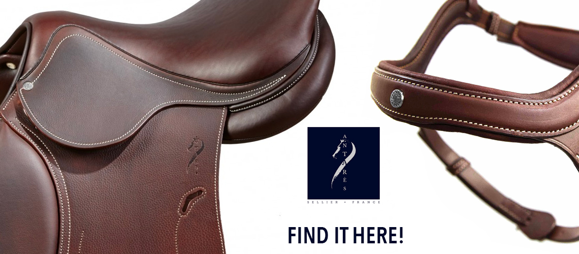 Get High Quality Horse Equipments And Accessories From Vision Saddlery