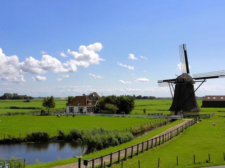 What should you know before moving to the Netherlands