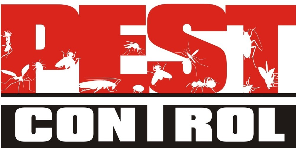 Control Pest Growth and Manifestation Through Professional Services