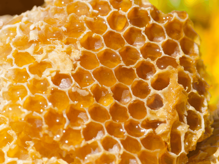 Types of honey, Uses, and their Benefits
