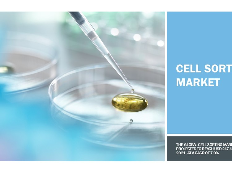 Cell Sorting Market Dynamics, Key Players and Regional Growth Analysis