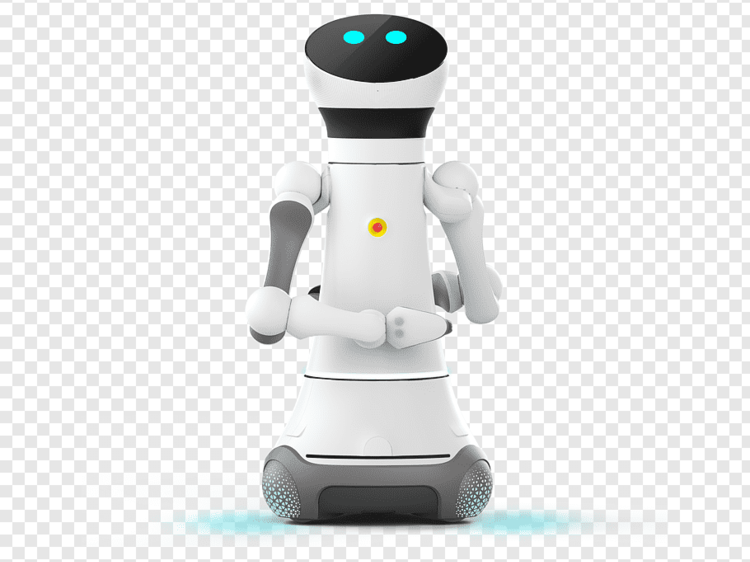 Service Robots: The Next Step Of Employee's Market